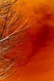 горящий вал Стоковые Изображения RF