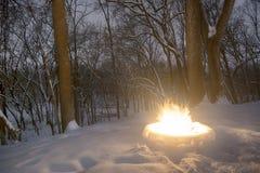 Горящий горячий огонь окруженный снегом в лесистой области стоковые фотографии rf