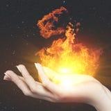 Горящий огонь знания Стоковая Фотография