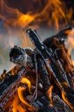 горящий пожар Стоковые Фотографии RF