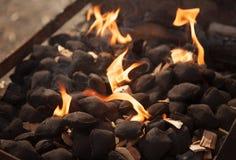 горящий уголь Стоковые Изображения