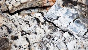 Горящий уголь от древесины как предпосылка Стоковая Фотография RF