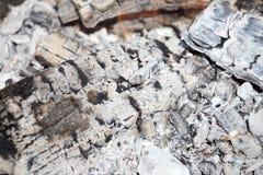 Горящий уголь от древесины как предпосылка Стоковые Фото