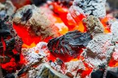 горящий уголь Стоковая Фотография