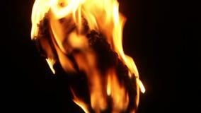 Горящий факел в темноте акции видеоматериалы