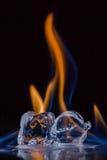 горящий льдед кубиков Стоковое Изображение RF