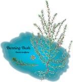 горящий bush Стоковые Фото