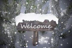 Гостеприимсво текста ели снежинок знака рождества Стоковые Изображения