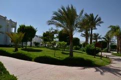 гостиница Египета Стоковое Изображение RF