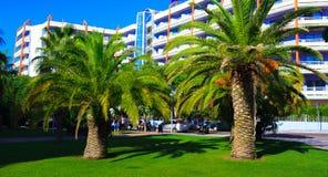 гостиница около пальм Стоковая Фотография RF