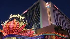 Гостиница фламинго и казино Лас-Вегас - красивый взгляд вечера - США 2017 акции видеоматериалы