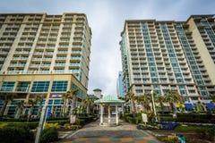 Гостиницы Highrise на oceanfront, в Virginia Beach, Вирджиния стоковые фотографии rf
