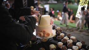 Гости на шоколадном батончике на свадьбе отрезали торт сток-видео