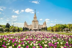 государственный университет moscow lomonosov здания главным образом Стоковое Изображение RF