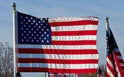 Государственный флаг США удостоя наших ветеранов Стоковое Изображение RF