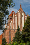 Готическая церковь в историческом центре Greifswald Стоковые Изображения