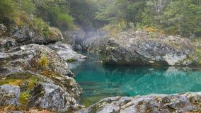 Готовить съемку ущелья на ясном реке в Новой Зеландии акции видеоматериалы