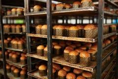 Готовое очень вкусное печенье на фабрике кондитерскаи стоковое изображение rf