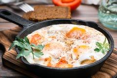 Готов-к-съешьте shakshuka от яичниц с томатами и петрушкой в лотке стоковое изображение rf
