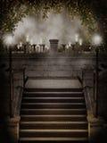 готские розовые лозы лестниц Стоковое Изображение RF