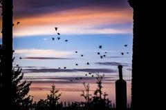 Готский заход солнца Стоковая Фотография