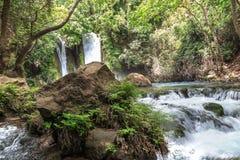 Голанские высоты Заповедник Banias Водопад Banias Стоковая Фотография RF
