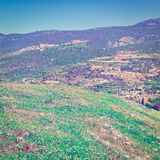 Голанские высоты Стоковые Фотографии RF
