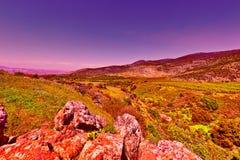 Голанские высоты Стоковая Фотография RF