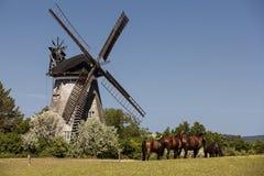 Голландская ветрянка в Benz Стоковые Фото