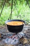 Голландская печь варя фасоли Стоковое фото RF