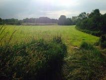 голландская ферма Стоковые Изображения RF