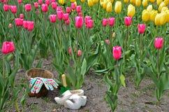 Голландские деревянные ботинки в поле тюльпана стоковое изображение