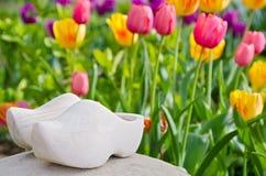 Голландские деревянные ботинки с тюльпанами стоковая фотография rf