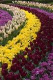Голландские сады Стоковая Фотография RF