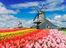 Голландские станы ветра Стоковое Изображение RF