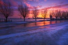 Голландский ландшафт зимы стоковое фото