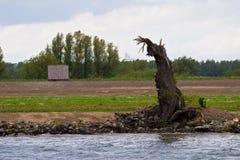 голландский ландшафт Стоковые Изображения