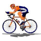 Голландский велосипедист дороги Стоковое фото RF