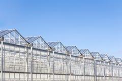 Голландский зеленый дом Стоковое Изображение