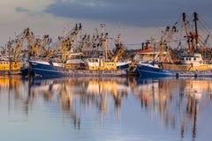 Голландский рыбозавод в гавани Lauwersoog стоковые изображения