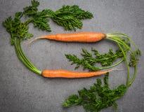2 голландских моркови Стоковое Фото