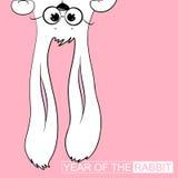год кролика Стоковые Изображения RF
