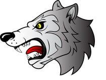 Голова волка Стоковое Изображение RF