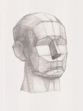 Голова гипсолита Стоковые Изображения RF