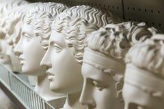 Голова гипсолита Стоковая Фотография RF