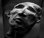 Голова глины стоковые изображения rf