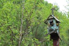 Голова змеек в отверстии birdhouse Стоковые Изображения RF