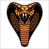 Голова змейки на бело- иллюстрации вектора иллюстрация вектора