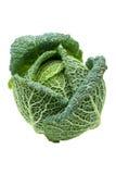 Голова зрелой изолированной капусты савойя Стоковое Изображение