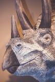 Голова динозавра Стоковая Фотография